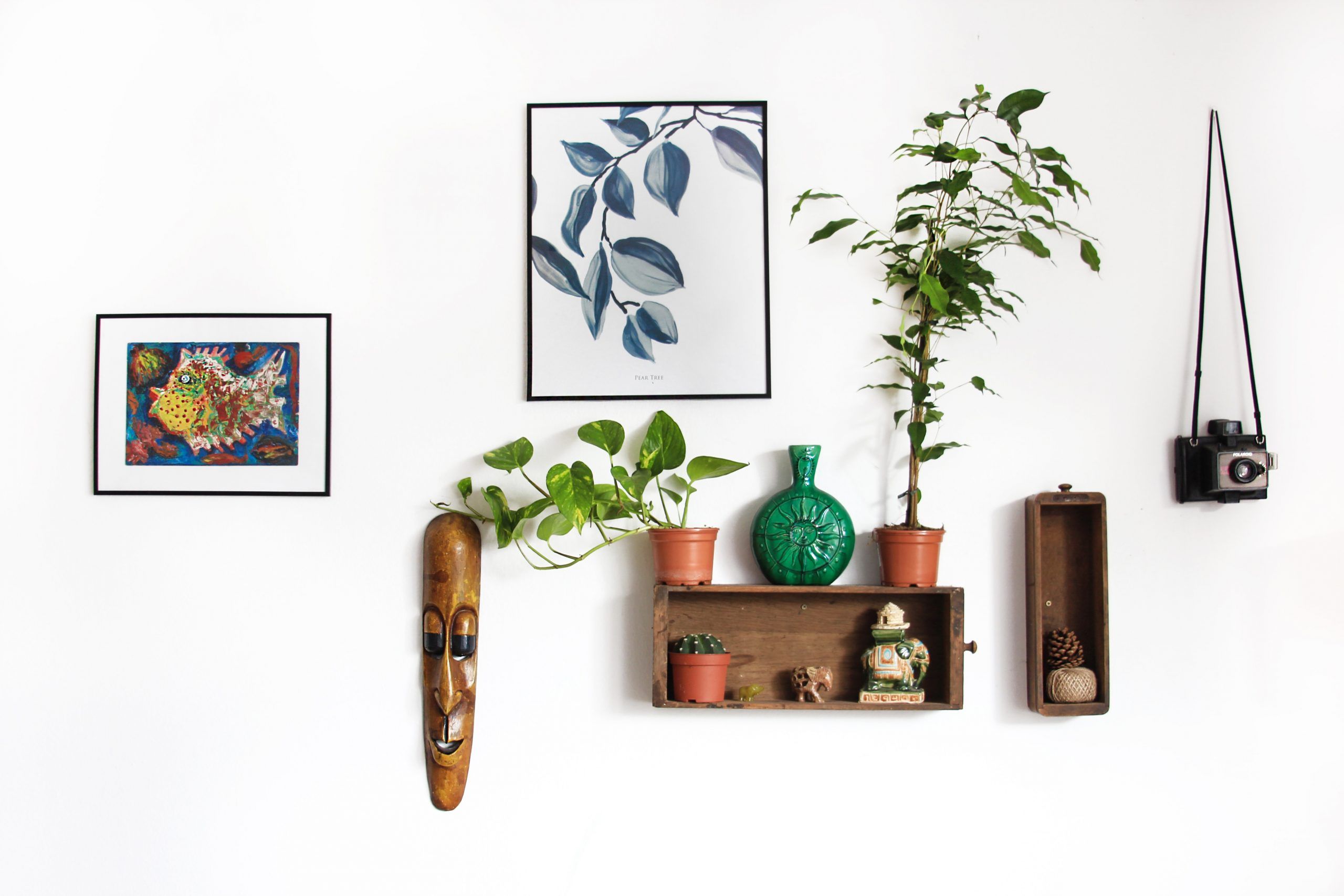 hanging plants and art
